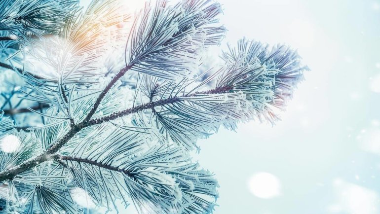Seven effective ways to beat the winter blues naturally