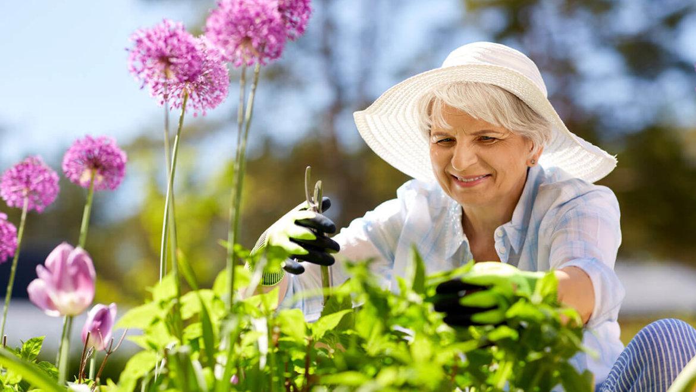 Six ways to prevent gardening injuries