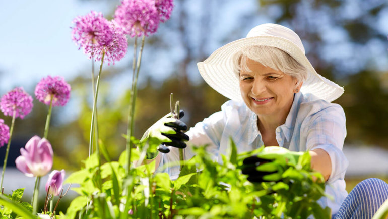 Six ways to prevent gardening injuries