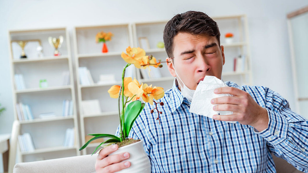 Five ways to relieve seasonal allergies naturally